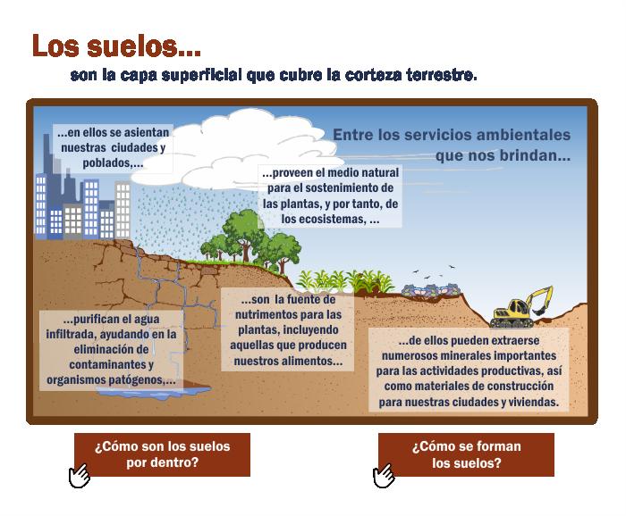 Infograf as ambientales - Laminas adhesivas para suelos ...